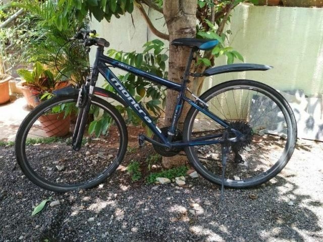 Montra Trance 19'' 2014