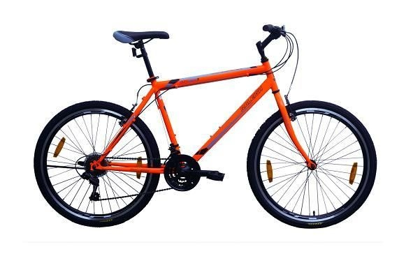 Raleigh MY RIDE 18.5 Inches 21 Speed 2018